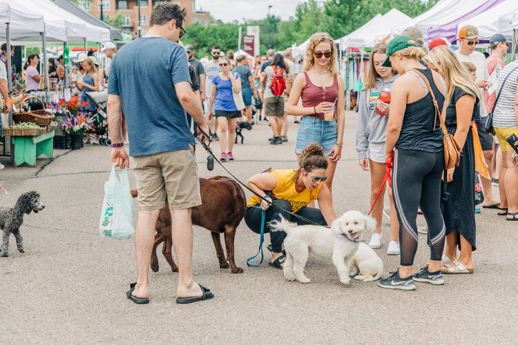 Saturdays at Cherry Creek Fresh Market cover photo 1