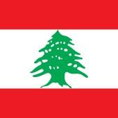 Middle Eastern Shack logo